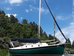 Sail Boats (Lake Martin Classifieds)