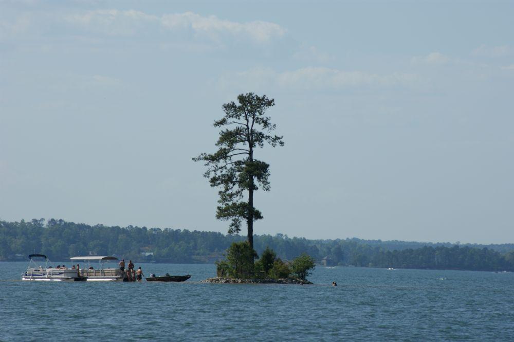 Sand island island at lake hartwell for Lake hartwell fishing hot spots