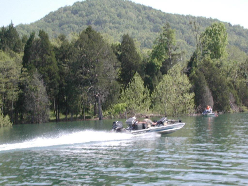 Photo gallery norris lake fishing for Norris lake fishing