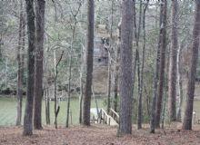Dogwood's Hideaway